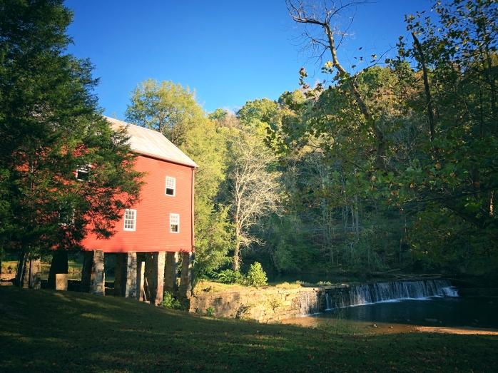 York Mill 1